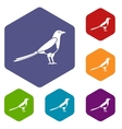 Bird magpie icons set vector image vector image