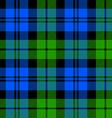 Black Watch milytary tartan seamless pattern vector image vector image