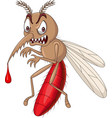 cartoon angry mosquito isolated on white backgroun vector image vector image