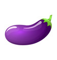 eggplant isolated vector image vector image