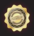 Golden Premium Quality Badge vector image vector image