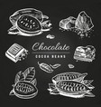 hand drawing chocolate and cocoa beans vector image