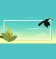 toucan bird design on background vector image vector image