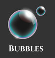 transparent soap bubbles with reflection vector image vector image