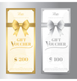 Elegant portrait gift voucher or gift card vector image vector image