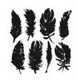 feather silhouettes collection elements vector image vector image