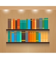 Home Library vector image