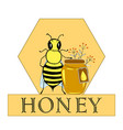 honey bee hand drawn jar and bee in honeycomb vector image