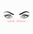 womans sexy makeup look womans eyes eyelashes vector image