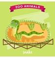 Zoo Animal Snake vector image vector image