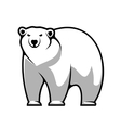 Cartoon polar bear vector image vector image