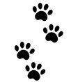 paws a dog vector image vector image