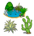 pond with piranhas cactus plants and stones vector image vector image