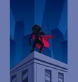superheroine roof watch silhouette vector image