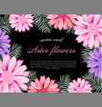 beautiful card with a different color aster vector image