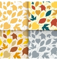 Falling leaves seamless patterns set vector image vector image
