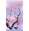 sacura pink vector image vector image