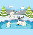 scene with polar bears in pond vector image vector image