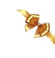 shiny golden satin ribbon gold bow for vector image vector image