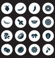 vegetable icons set with cocoanut cucumber vector image vector image