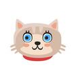 cute gray kitten head funny cartoon cat character vector image vector image