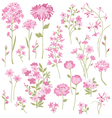 hand drawn pink flowers vector image vector image