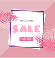 special offer sale shop now square frame pink back vector image vector image
