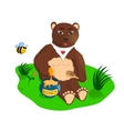 The bear with honey vector image
