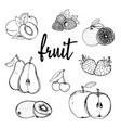 fruit hand drawn contour vector image