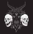 baphomet demon goat head and human skulls hand vector image vector image