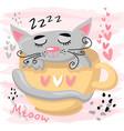cute sleeping cat baanimal nursery vector image vector image
