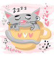 cute sleeping cat baby animal nursery vector image