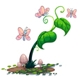 A green plant with butterflies vector image vector image