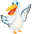 Animated pelican vector image