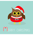 Cute owl in Santa Claus costume hat Snowflakes vector image