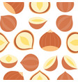hazelnut seamless pattern for wallpaper or vector image