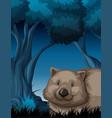 wombat in nature night scene vector image vector image