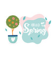 happy spring tree flowers in pot with heart love vector image