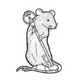 mouse with key sketch vector image