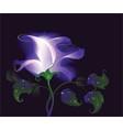 unreal rose vector image vector image