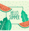 watermelon summer fruit and leaves background vector image