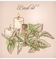 Basil essential oil and candles vector image
