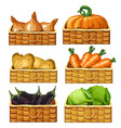 baskets for storing vegetables food vector image vector image