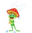 Cute frog wearing rain gear under mushroom vector image vector image