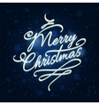 Merry Christmas lettering with frozen effects vector image vector image