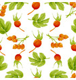 seamless autumn pattern with berries and leaves vector image vector image