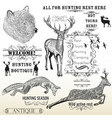 set of engraved hand drawn animals deer bear fox vector image vector image