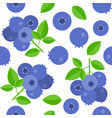 blueberries seamless pattern for wallpaper or vector image