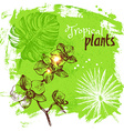 Hand drawn sketch tropical plants background vector image vector image