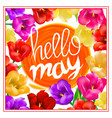 hello may hand lettering with tulip flower vector image vector image